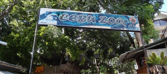 驚異のCEBU zoo