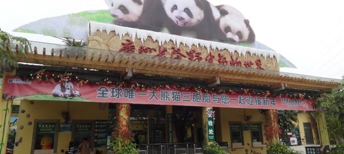 【世界の動物園】アジアNo4の動物園 長隆香江野生動物世界その1
