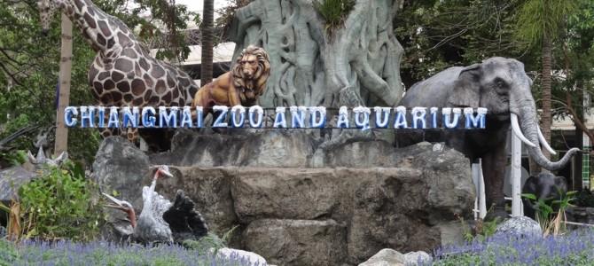 【世界の動物園】チェンマイ動物園は坂が多過ぎ