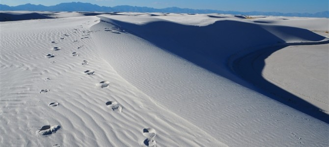 【アメリカ横断Day10】真っ白の世界、ホワイトサンズ国定公園とメキシコ国境の町