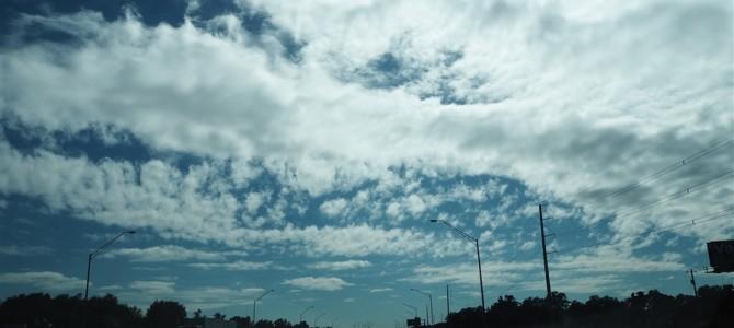 【アメリカ横断Day15】夢の国、フロリダ到着。明日から4日間夢の国