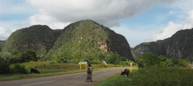【キューバ15日目-2】乗馬からの自転車でビニャーレス近郊周遊。タカさんのお尻に異変!?【後編】