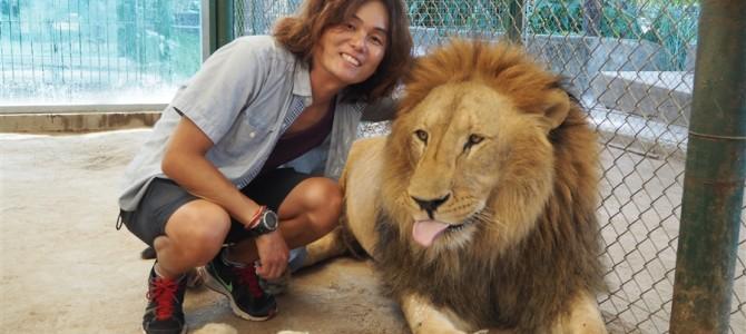 【世界の動物園】ライオン大好きな僕は行きたくてしょうがなかったルハン動物園